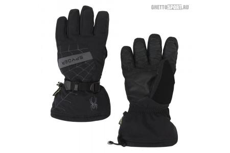 Перчатки Spyder 2019 Overweb Goretex Ski Black XL